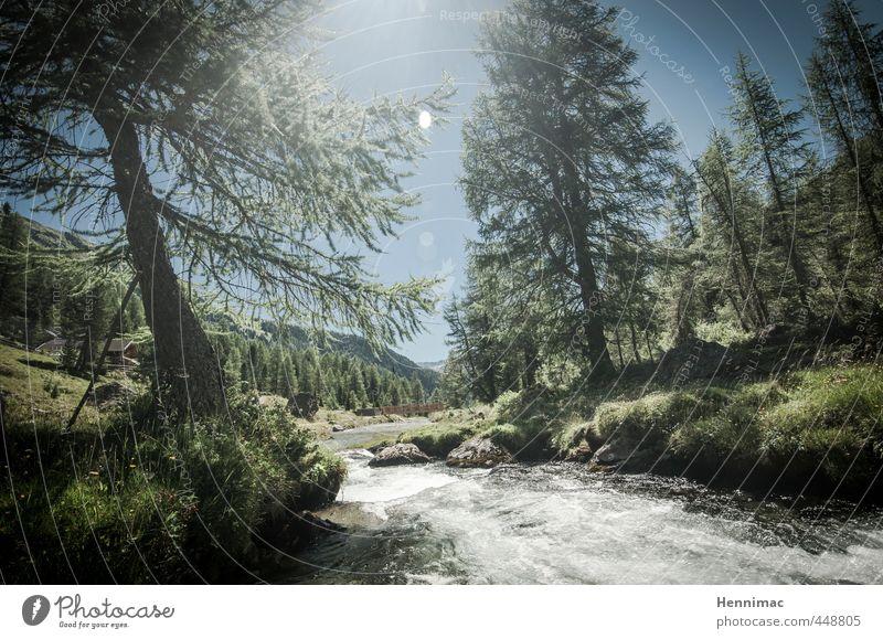 …wo die Welt noch in Ordnung ist. Himmel Natur Ferien & Urlaub & Reisen blau grün Wasser Sommer Baum Einsamkeit Landschaft Tier Berge u. Gebirge Stimmung Idylle wandern Schönes Wetter