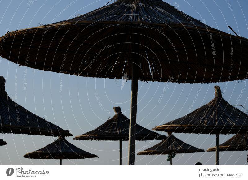 Bast-Sonnenschirme in Abenddämmerung Sommer Sommerurlaub Sommerferien Ferien & Urlaub & Reisen Strand Meer Tourismus Erholung Außenaufnahme Küste Himmel