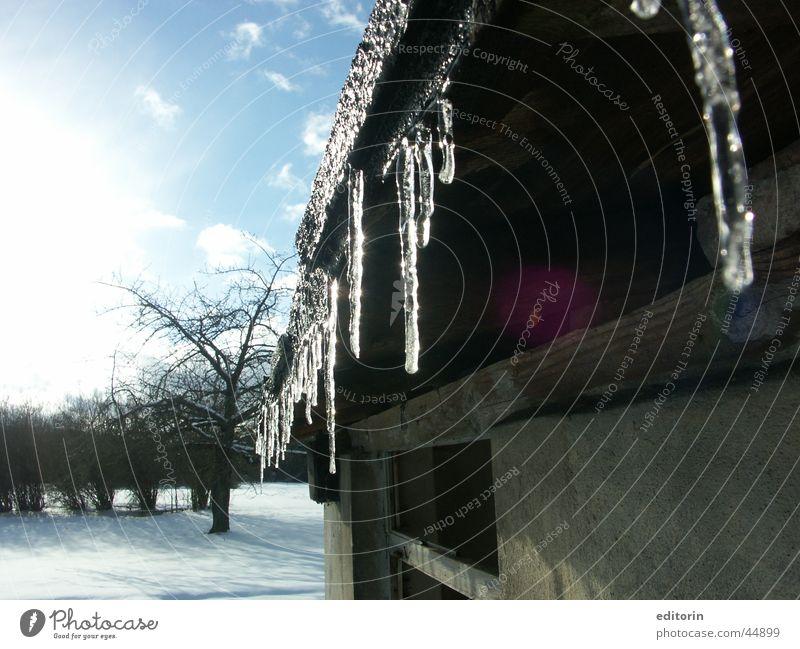 Kleine Eiszeit Sonne Winter kalt Verkehr Frost Eiszapfen