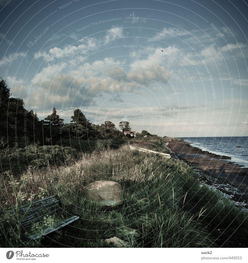 Bankenkrise Umwelt Natur Landschaft Pflanze Himmel Wolken Horizont Klima Wetter Schönes Wetter Baum Sträucher Küste Ostsee Schonen natürlich ruhig Idylle Ferne