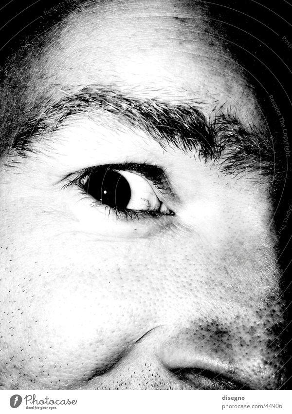 das kohnische auge maskulin Augenbraue Mann freaky Schwarzweißfoto Gesicht Nase