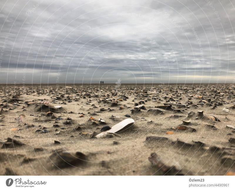 Strandtag Strand und Meer Beach Langeoog weite grau Steine am Strand