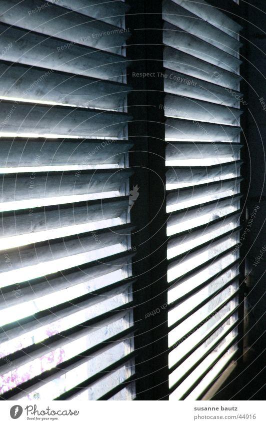 Erwartungen Fenster Holz Häusliches Leben geheimnisvoll Jalousie Lichtschein Lichtstrahl