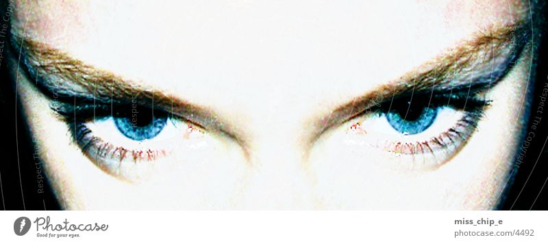 augen Mensch Auge blaue augen