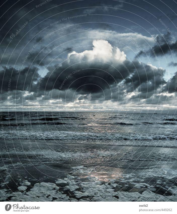 Cumulus Umwelt Natur Urelemente Wasser Himmel Wolken Gewitterwolken Klima Wetter Schönes Wetter Wellen Küste Ostsee Meer gigantisch groß Unendlichkeit