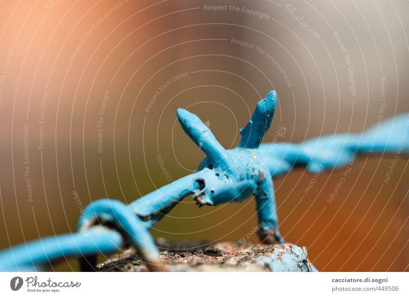 Blau mit Stacheln blau Stadt klein außergewöhnlich Linie Metall Kraft Ordnung gefährlich verrückt Spitze bedrohlich einfach Sicherheit Schutz Zaun