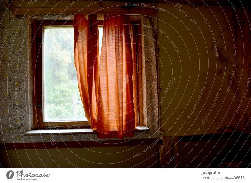 Fenster mit Vorhang in verlassenem Bungalow im Wald Fensterscheibe Gardine Tapete alt marode Haus Hütte Urlaub Ferien Licht Fensterblick Fensterrahmen Gebäude