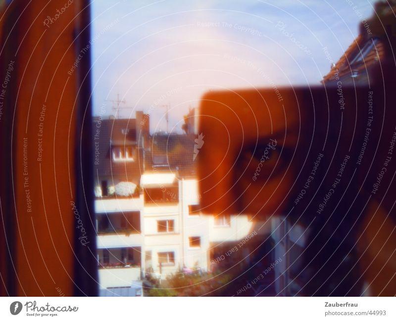 Mädchen in orange Mensch Stadt Haus Traurigkeit Hinterhof