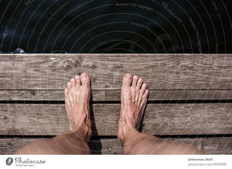 Spring! Mensch Jugendliche Sommer Sonne nackt Erwachsene 18-30 Jahre Leben Küste Holz Schwimmen & Baden See Beine springen Fuß maskulin