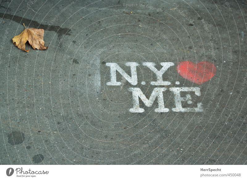 Behauptung Herbst New York City Zeichen Schriftzeichen Graffiti grau rot weiß selbstbewußt Bürgersteig Liebe These Herz sprühen Blatt Herbstlaub Farbfoto