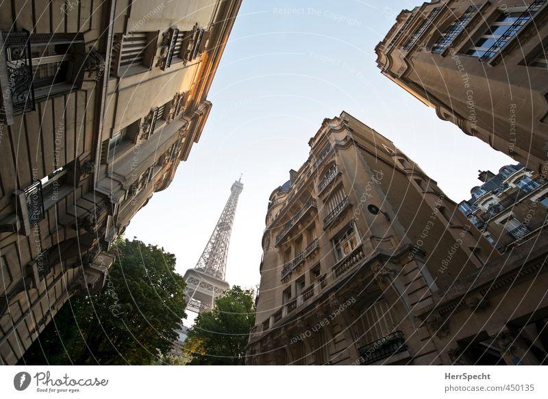 Zum Niederknien Wolkenloser Himmel Schönes Wetter Baum Paris Frankreich Hauptstadt Menschenleer Haus Gebäude Architektur Fassade Balkon Dach Sehenswürdigkeit