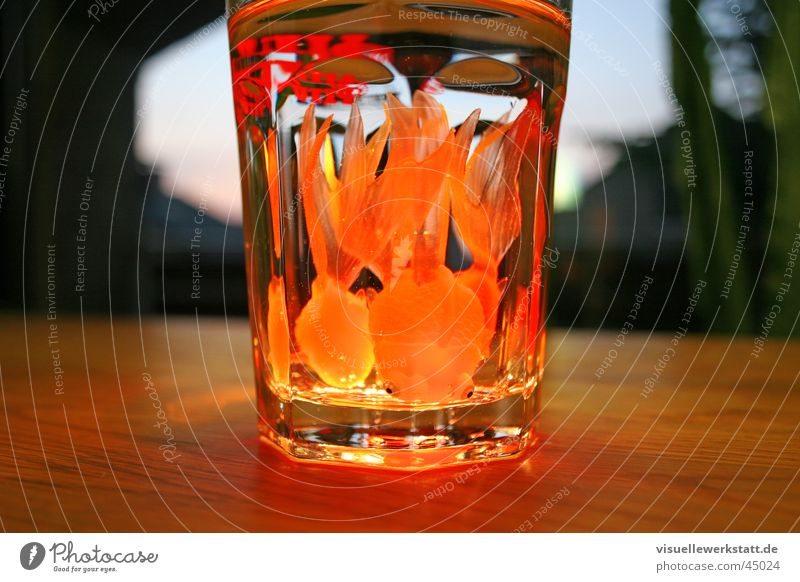 fish cocktail Wasser Wärme orange Glas Ernährung lecker Physik Gummi Fototechnik Goldfisch Wissenschaften