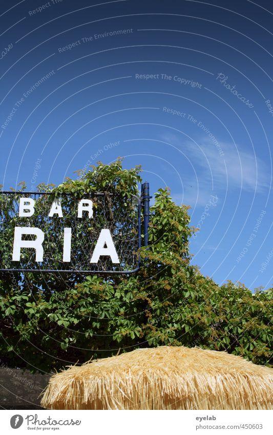 BAR RIA Himmel Natur Ferien & Urlaub & Reisen blau grün weiß Pflanze Sommer Baum Wolken Wärme Holz Metall Wetter Klima Schilder & Markierungen