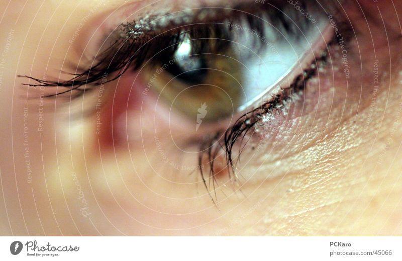 Auge Frau grün Tusche