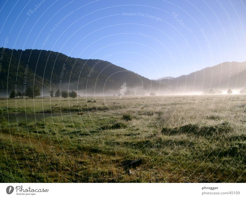 MorningSun Sonne ruhig Wiese Nebel Tal