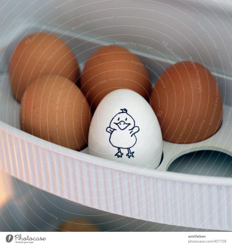 Untermieter / Hoffentlich kein Küken Lebensmittel Ei Ernährung Essen Frühstück Bioprodukte Vegetarische Ernährung Kühlschrank Energiewirtschaft Diät Gesundheit