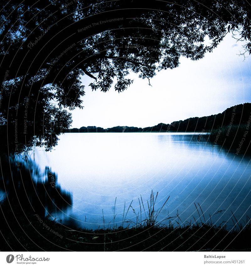 Abendstimmung am See Sommer Natur Landschaft Wasser Wolken Wetter Wärme Baum Gras Blatt Wald Küste Erholung blau schwarz weiß Gefühle Stimmung Zufriedenheit