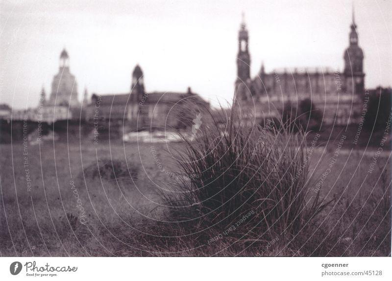 iGras Einsamkeit oben Architektur Dresden Frauenkirche Grasbüschel Elbwiese Brühlsche Terrasse