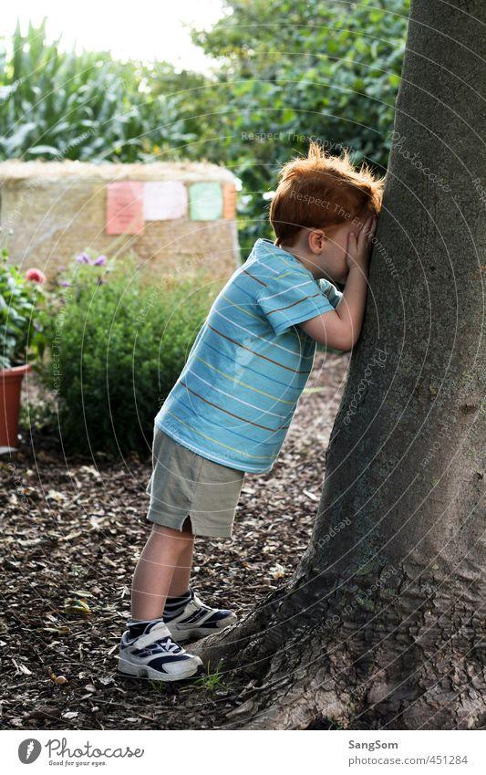 1,2,3,8,12,6.... ich komme! Mensch Kind Natur Sommer Freude Junge Spielen maskulin Kindheit stehen Schönes Wetter niedlich verstecken Kleinkind Baumstamm rothaarig
