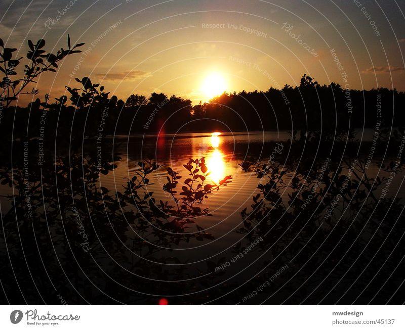 sonnenuntergang Sonnenuntergang Roter Himmel Oberfläche Reflexion & Spiegelung Wasser