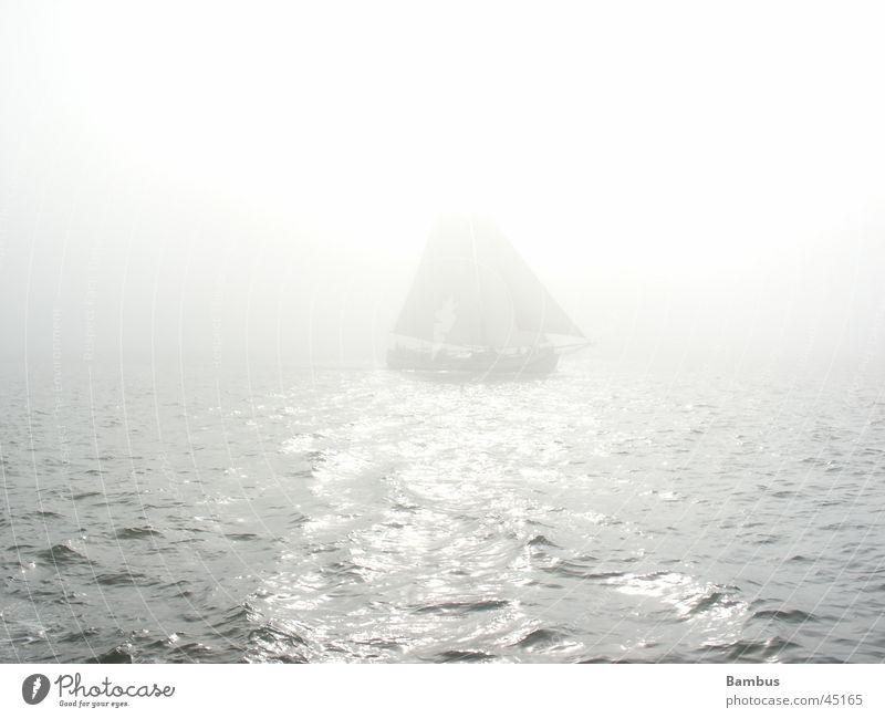 Segelschiff Wasser Sonne Meer hell Nebel Horizont Schifffahrt Niederlande Segelschiff