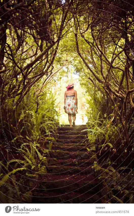 ins licht Mensch feminin Junge Frau Jugendliche Erwachsene 1 Natur Landschaft Pflanze Baum Sträucher Garten Park Wald Urwald außergewöhnlich bedrohlich dunkel