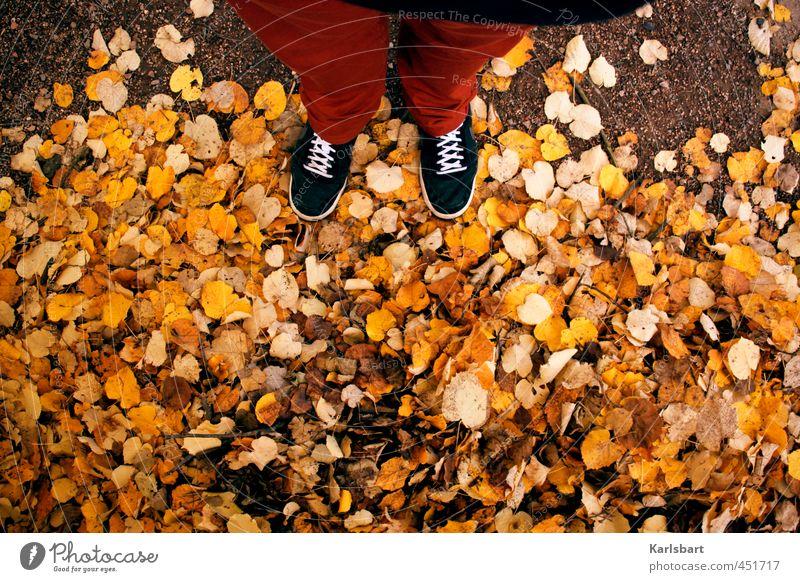 herbst so rum Ausflug wandern Erntedankfest Studium Mensch 1 Natur Herbst Blatt Fußgänger Wege & Pfade Hose Schuhe Turnschuh laufen stehen Bewegung Herbstlaub