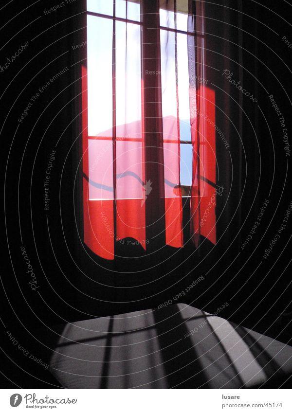 window rot Fenster Stimmung Häusliches Leben Vorhang