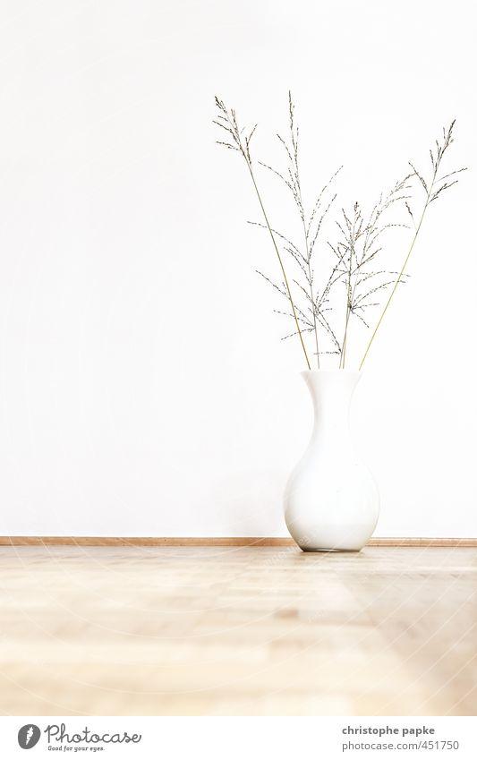 Heim-Dekoration Lifestyle Häusliches Leben Wohnung Innenarchitektur Dekoration & Verzierung Pflanze Topfpflanze ästhetisch hell Design Farbfoto Innenaufnahme