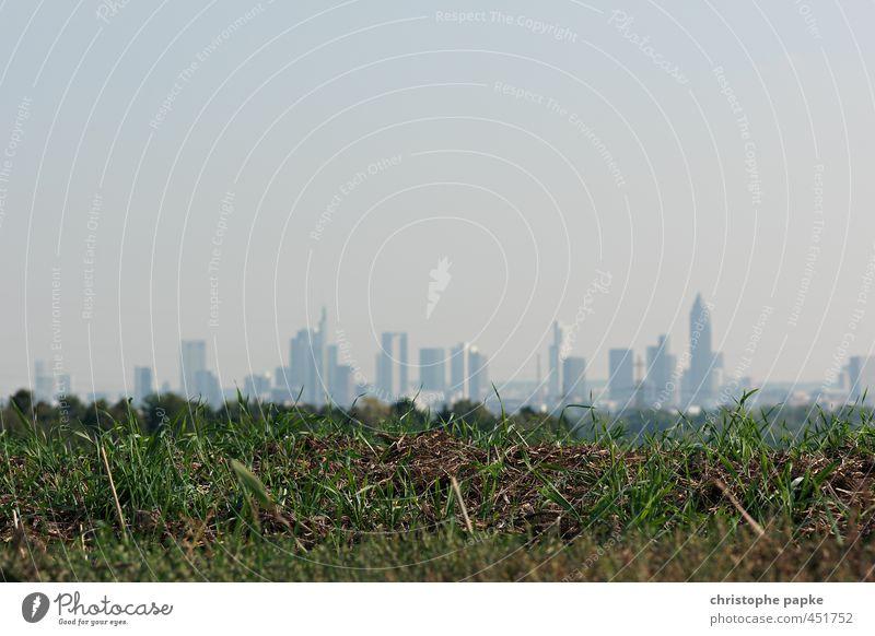 Im Grünen Wirtschaft Kapitalwirtschaft Himmel Wolkenloser Himmel Wiese Feld Frankfurt am Main Stadtrand Skyline Hochhaus Bankgebäude im grünen speckgürtel