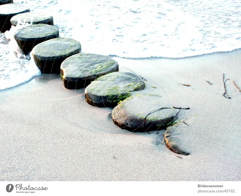 Wellenbrecher Wasser Strand Holz Sand Ostsee Buhne