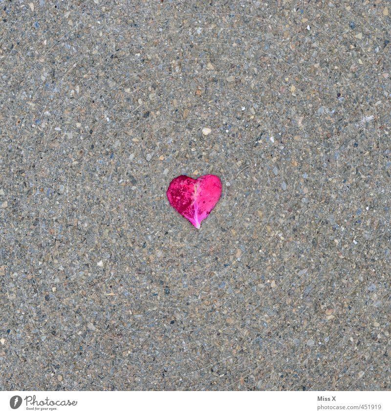 Mit Liebe gesehen Valentinstag Hochzeit Rose Blüte Straße Wege & Pfade Herz liegen Gefühle Stimmung Verliebtheit Romantik Traurigkeit Liebeskummer Rosenblätter