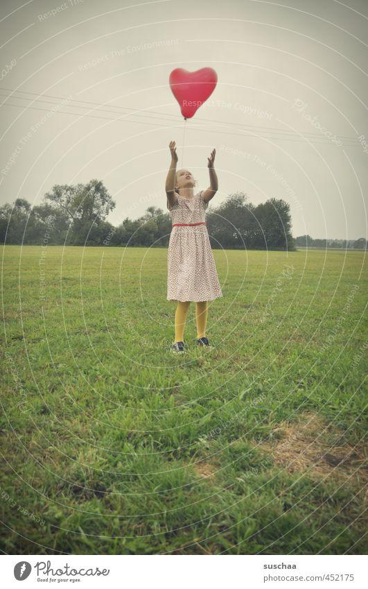 herzchen flieeeeeg Mensch Kind Himmel Natur Jugendliche grün Sommer rot Junge Frau Mädchen Landschaft Umwelt Liebe Leben Wiese Gras