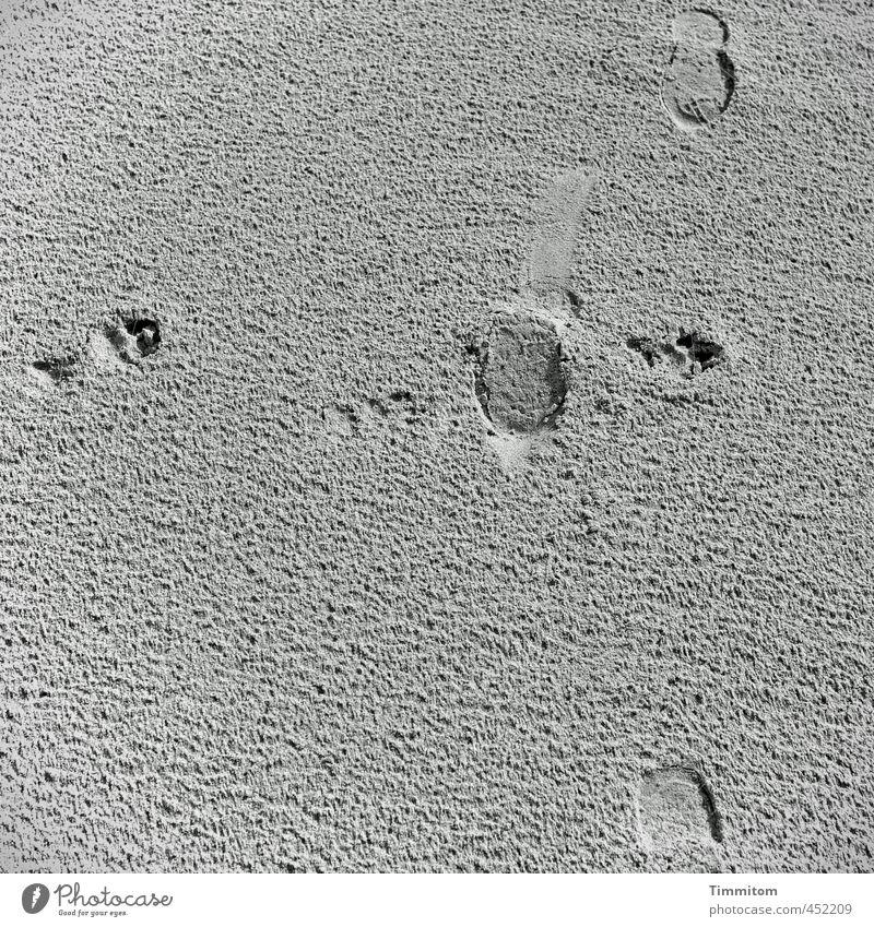 Ampellose Kreuzung. Natur Ferien & Urlaub & Reisen Strand schwarz Umwelt Gefühle Bewegung natürlich grau gehen Sand ästhetisch einfach Spuren Nordsee Fußspur