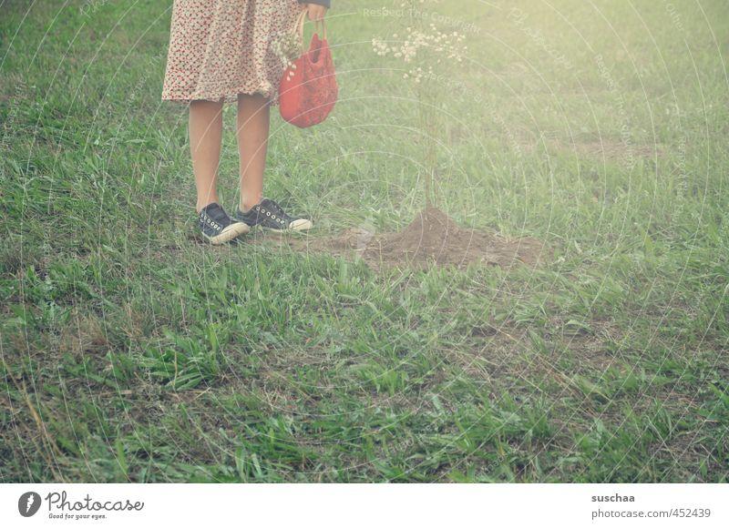 rotkäppchen feminin Mädchen junges Mädchen weiblich Kind Kindheit Körper Haut Beine Fuß 8-13 Jahre Umwelt Sommer Gras Garten Wiese Feld stehen grün Schuhe Kleid
