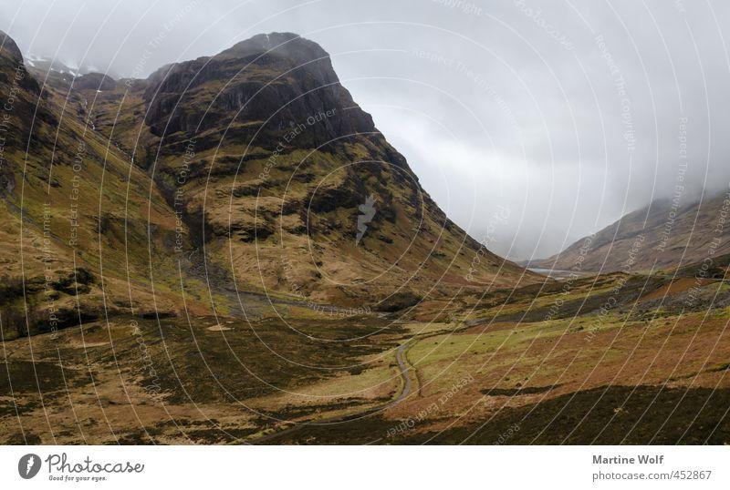 typisch schottisch Ferien & Urlaub & Reisen Ausflug wandern Natur Landschaft schlechtes Wetter Nebel Heide Hügel Berge u. Gebirge Schottland Großbritannien