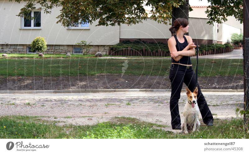 Sonntagsspaziergang Dorf Hund Freundschaft Gras Haus Wachsamkeit Baum Verkehr Straße abweisent Seil schwarze sachen