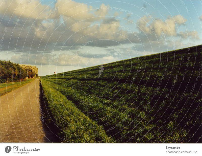 Weite Wolken Ferne Gras Wege & Pfade Landschaft Zukunft Unendlichkeit Deich