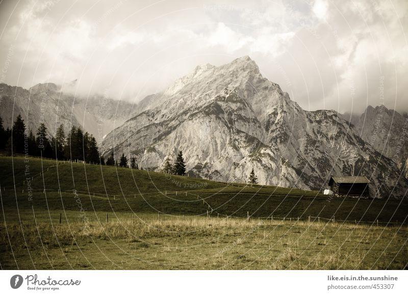 postkartengrüße aus tirol: 1€ Natur Ferien & Urlaub & Reisen Sommer Baum Erholung Einsamkeit ruhig Landschaft Wolken Wald Umwelt Berge u. Gebirge Idylle