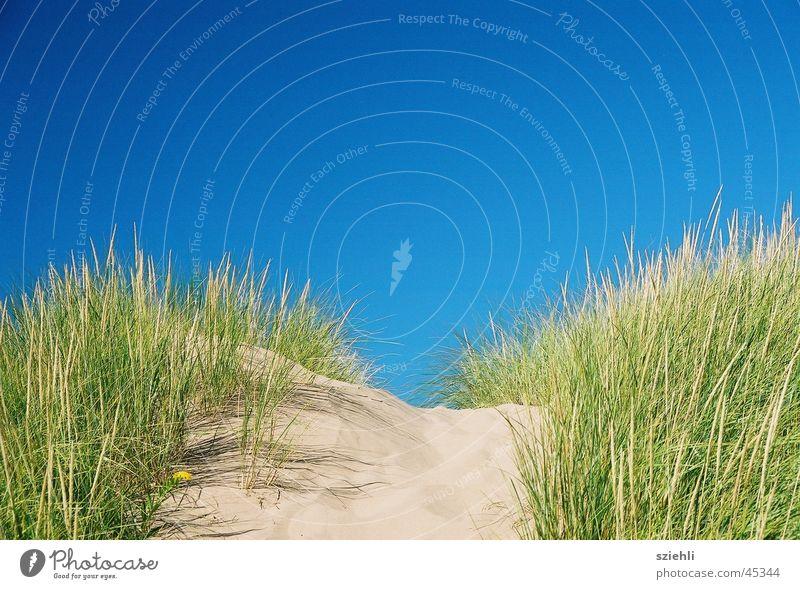 blauer geht es nicht Himmel blau Strand Sand Horizont Sandbank