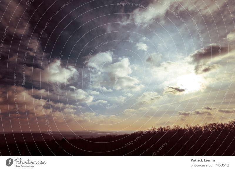 Miles Away Umwelt Natur Landschaft Urelemente Luft Himmel Wolken Sonne Sonnenaufgang Sonnenuntergang Sonnenlicht Wetter Schönes Wetter Baum Wald Hügel
