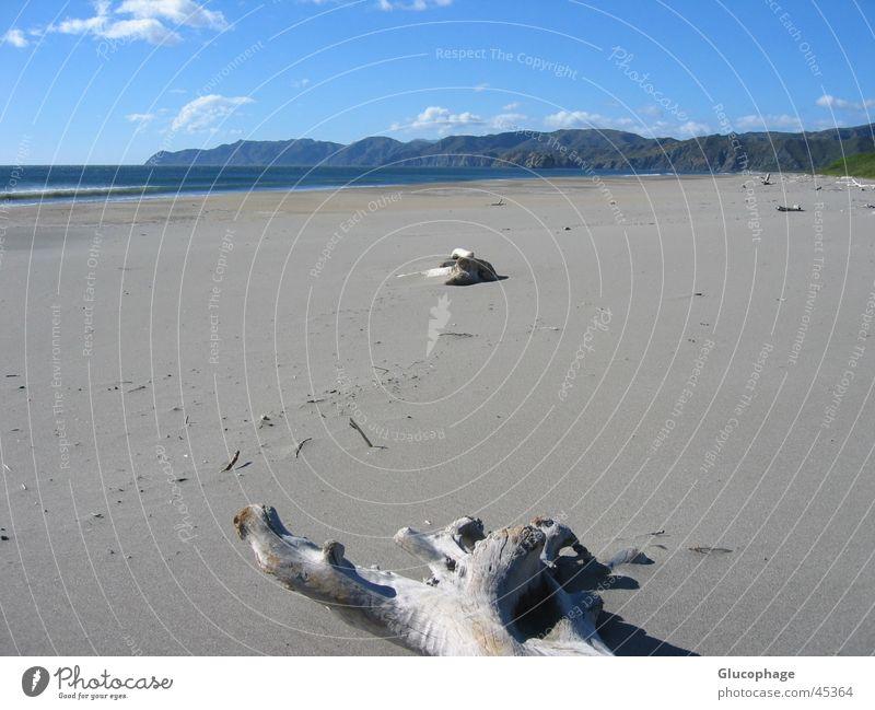 gestrandet Wasser Sonne Meer Sommer Strand Ferien & Urlaub & Reisen ruhig Wolken Einsamkeit Erholung Freiheit Wärme Sand Wellen Küste mehrere