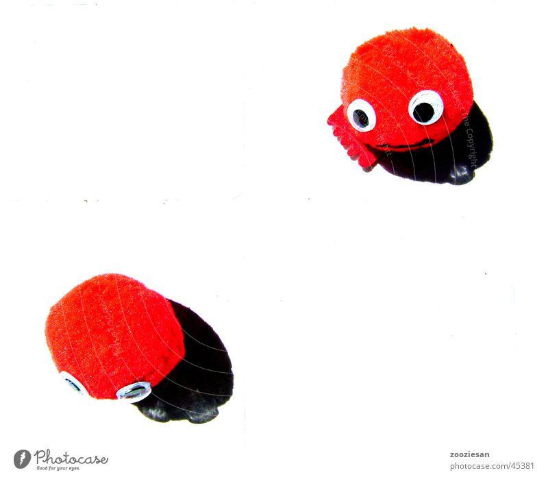 little reds : sorry rot Freizeit & Hobby niedlich