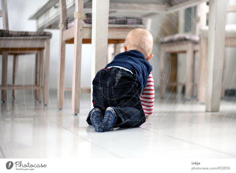 Feldforschung Lifestyle Freizeit & Hobby Spielen Häusliches Leben Wohnung Möbel Stuhl Tisch Raum Esszimmer Bodenbelag Baby Kindheit Körper Rücken 1 Mensch