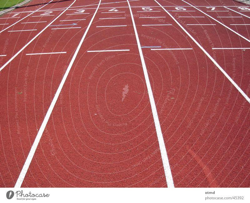 run for gold rot Sport laufen Beginn Eisenbahn Ziel Ziffern & Zahlen Stadion Laufbahn