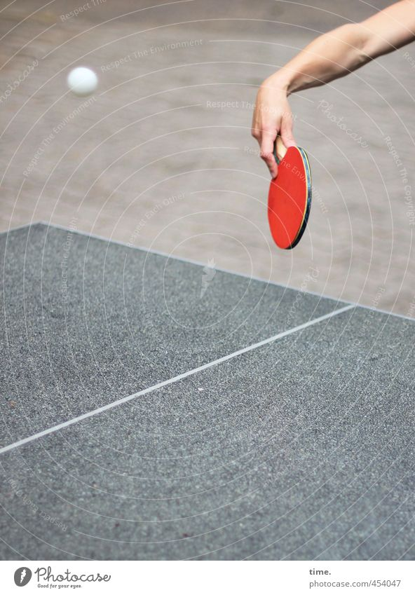 return to sender Sport Fitness Sport-Training Ballsport Tischtennis Tischtennisplatte Tischtennisball Tischtennisschläger Arme Hand 1 Mensch fliegen Spielen