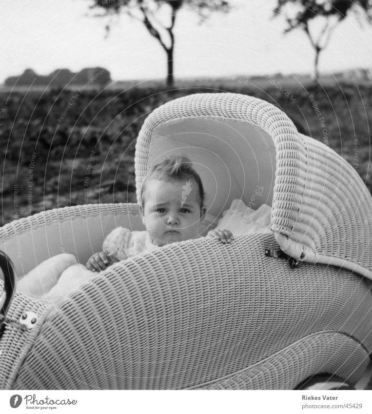 im Kinderwagen Baby Mädchen Baum Feld Hand Haare & Frisuren Hahnenkamm Degersen Kleinkind Verkehr korbgeflecht 1955