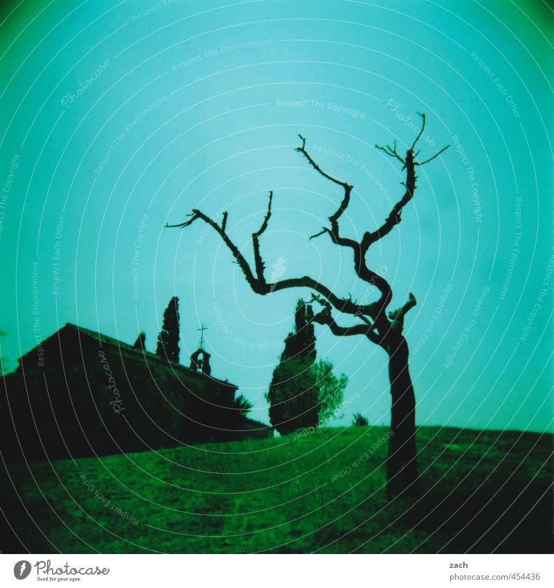 Verneigung blau grün Pflanze Baum Landschaft Haus dunkel Wiese Traurigkeit Tod Gebäude Religion & Glaube Angst Kirche bedrohlich Vergänglichkeit
