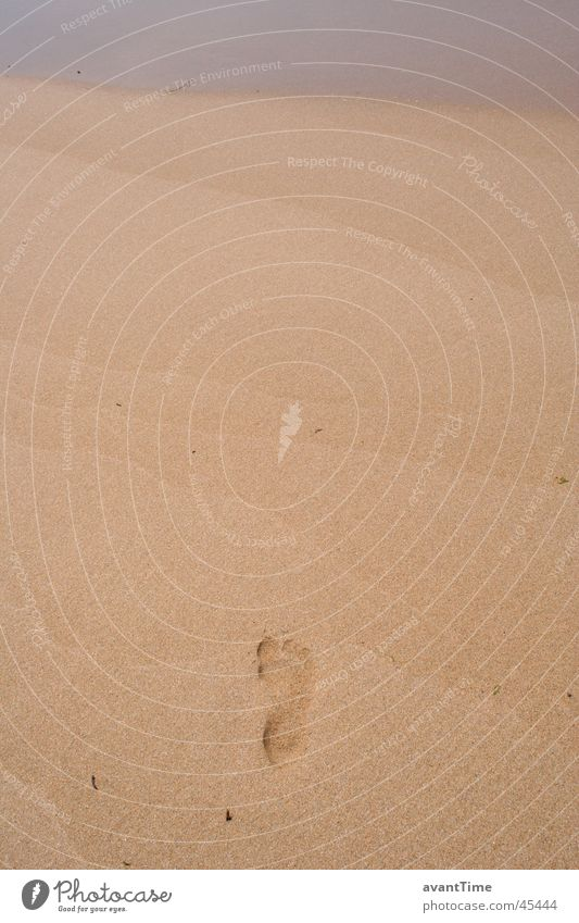 Fußspur Meer Fuß Wege & Pfade Sand schreiten