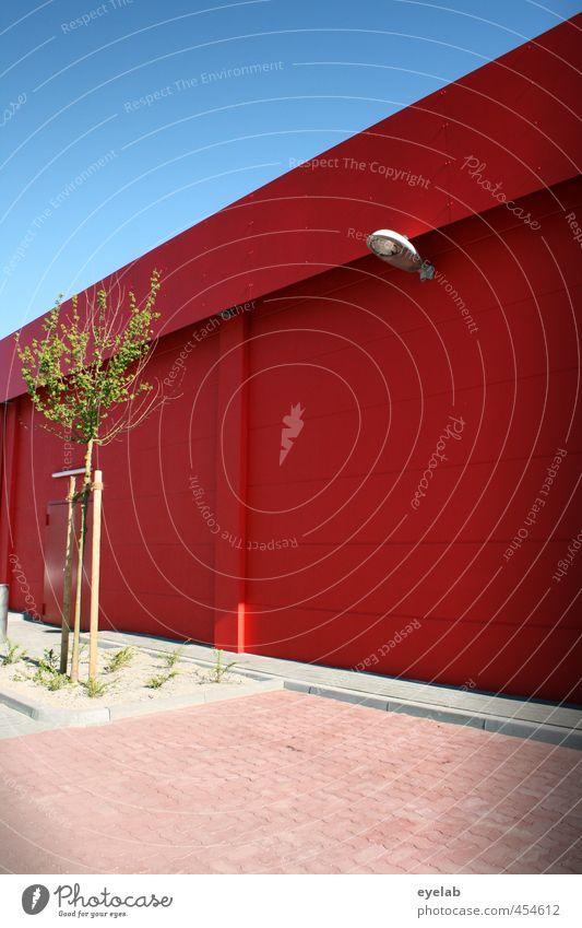 Die Farbe war grad im Angebot Himmel Natur Stadt Pflanze Sommer Baum Haus Umwelt Wand Architektur Frühling Gras Gebäude Mauer Garten Fassade